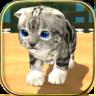 动物猫模拟器 修改版