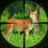 丛林狙击兵狩猎